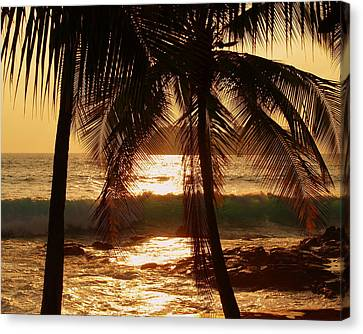 Shower Canvas Print - Dusk by Athala Carole Bruckner