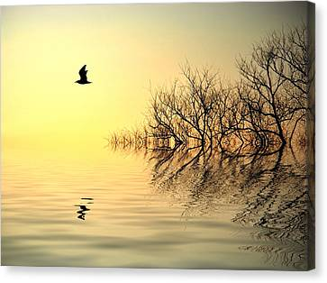 Dusk Flight Canvas Print by Sharon Lisa Clarke