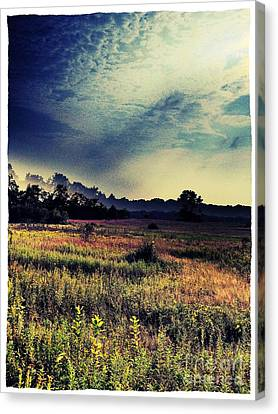Dusk In The Pasture Canvas Print