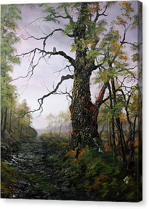 Cannock Chase Canvas Print - Dusk On Canncok Chase by Jean Walker