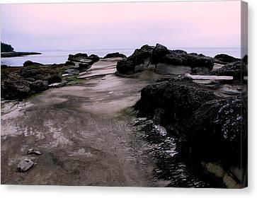 Hornby Island Canvas Print - Dusk On Hornby Island by Annie  DeMilo