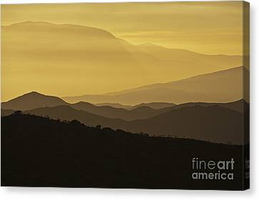 Dusk Over The Spanish Hills Of Andalusia Canvas Print by Heiko Koehrer-Wagner