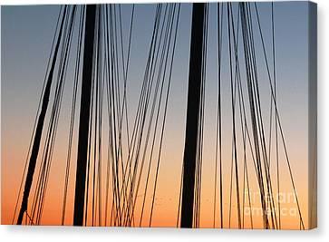 Canvas Print featuring the photograph Dusky Ropes by Sebastian Mathews Szewczyk