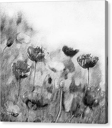 Dusky Whispers Canvas Print