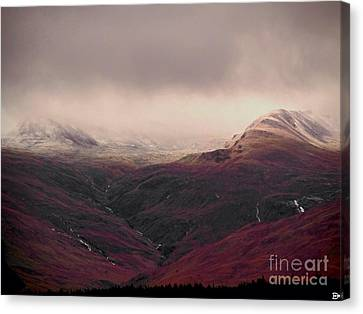 Dusting Canvas Print by Andy Heavens
