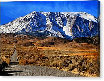 Dusty Gravel Road Canvas Print by Donna Kennedy