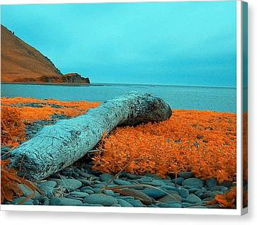Dutch Harbor Alaska Canvas Print by Yul Olaivar