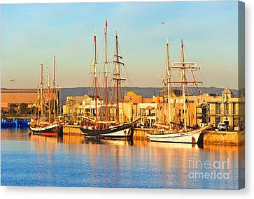 Dutch Tall Ships Docked Canvas Print by Bill  Robinson