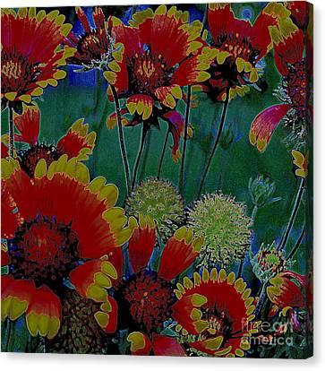 Duvet 7 Canvas Print