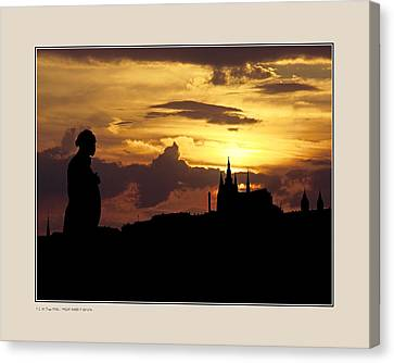 Canvas Print featuring the photograph Dvorak And Skyline by Pedro L Gili