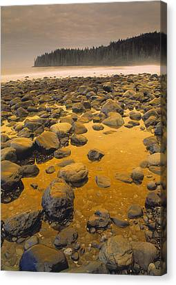 China Beach Canvas Print - D.wiggett Rocks On Beach, China Beach by First Light
