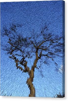 Dynamic Dawn Canvas Print