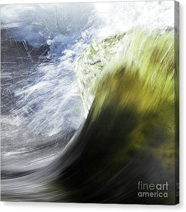 Dynamic River Wave Canvas Print by Heiko Koehrer-Wagner