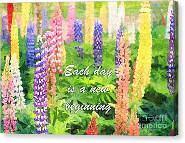 Each Day Is A New Beginning Colorful Lupine Flowers Canvas Print