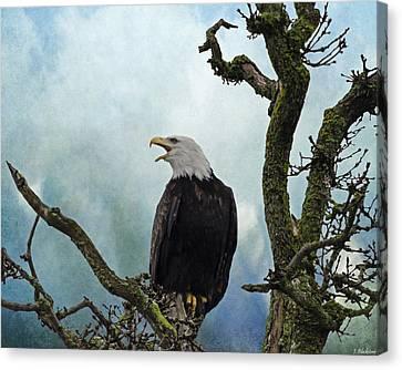 Eagle Art - Character Canvas Print by Jordan Blackstone