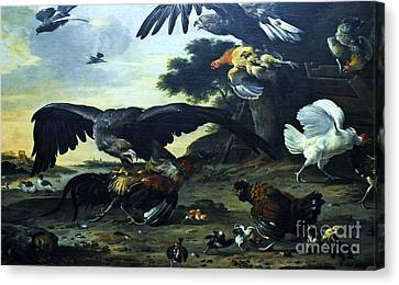 Eagle Attacking Canvas Print by Pg Reproductions