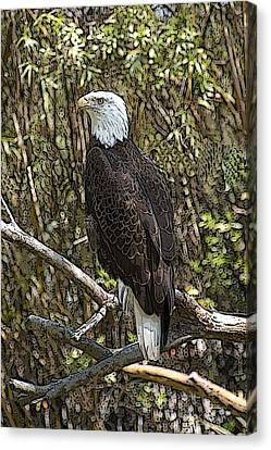 Eagle Canvas Print