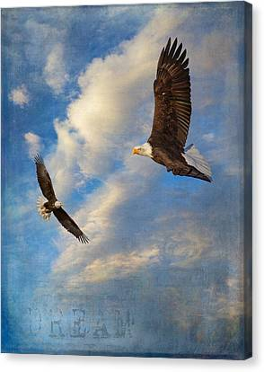 Eagle Dream Canvas Print by Angie Vogel