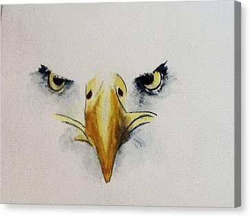 Eagle Eyes Canvas Print by Catherine Swerediuk