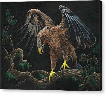 Eagle In Darkness Canvas Print by Heather Bradley