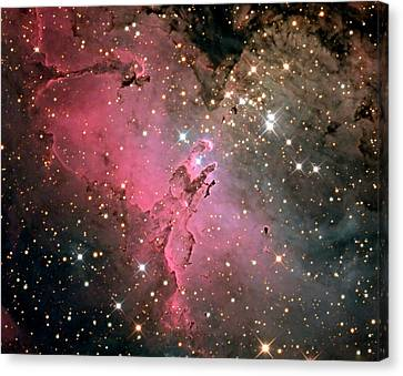 Nebula Canvas Print - Eagle Nebula (m16) by Damian Peach