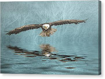 Canvas Print featuring the photograph Eagle On Misty Lake by Brian Tarr