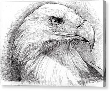 Eagle Portrait Canvas Print by Alban Dizdari