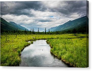 Eagle River Nature Center Canvas Print by Andrew Matwijec