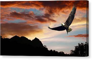 Eagle Sunset Canvas Print by Daniel Hagerman