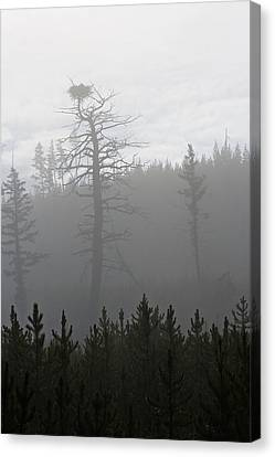 Eagle's Nest In Fog Canvas Print