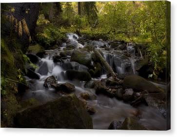 Canvas Print featuring the photograph Early Autumn Cascades by Ellen Heaverlo