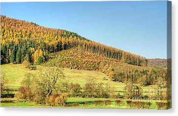 Early Autumn Canvas Print by David Birchall