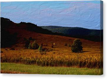 Early Autumn Field Canvas Print