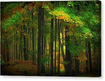 Early Fall 4 Canvas Print by Emmanuel Panagiotakis