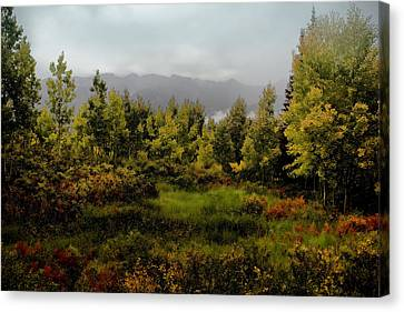 Canvas Print featuring the photograph Early Fall On Kebler Pass by Ellen Heaverlo