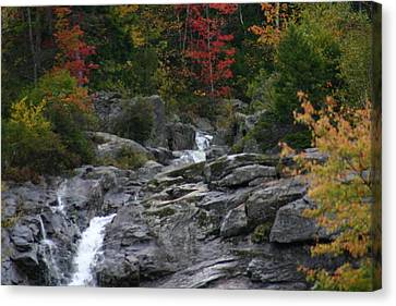 Canvas Print featuring the photograph Early Fall Waterfall by Denyse Duhaime