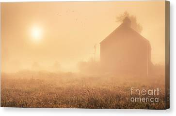 Early Foggy Morning On The Farm Canvas Print by Edward Fielding