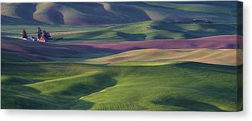 Contour Farming Canvas Print - Early Light In The Palouse by Latah Trail Foundation