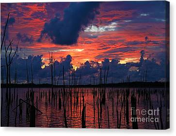Early Light Canvas Print