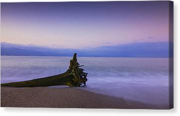 Early Morning Canvas Print by Aged Pixel