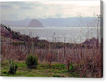 Canvas Print featuring the photograph Morro Bay Early Morning by Walter Fahmy