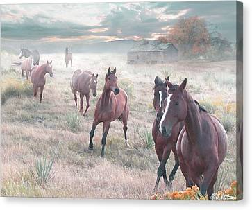 Early Morning Fog Canvas Print by Bill Stephens