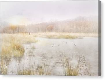 Early Morning Geese Canvas Print