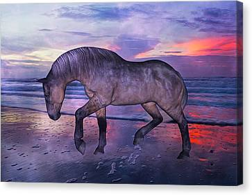 Bay Horse Canvas Print - Early Morning Hours by Betsy Knapp