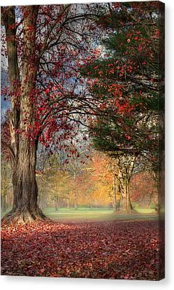 Early Morning In The Park Canvas Print by Bill Wakeley