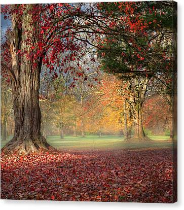 Early Morning In The Park Square Canvas Print