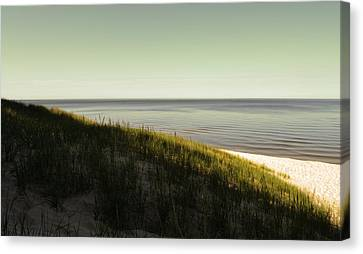 Early Morning Light Canvas Print by Michelle Calkins