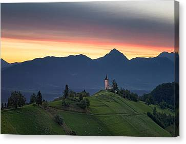 Early Morning Pasture Canvas Print