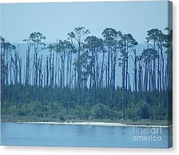 Panama City Beach Canvas Print - Early Morning Serenity by Joseph Baril