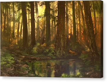 Headstones Canvas Print - Early Morning Sun On Cannock Chase by Jean Walker